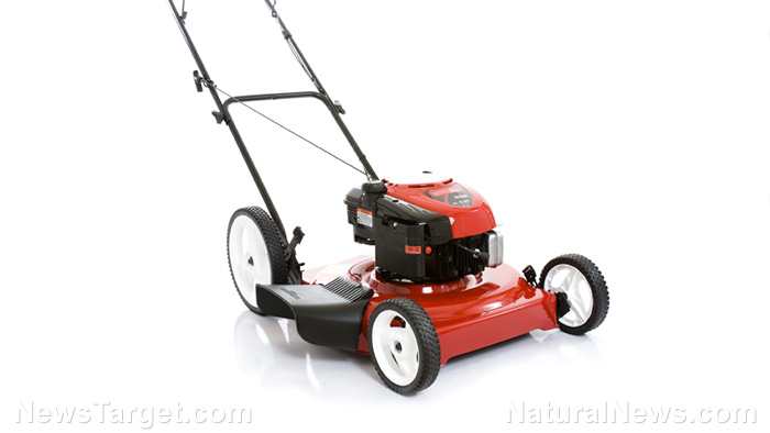 6 repurposing ideas for your old lawn mower